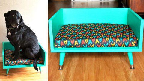 Φτιάχνουμε μόνοι μας ένα μοντέρνο Καναπέ Σκύλου ή Γάτας